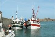 Le port de Plougasnou